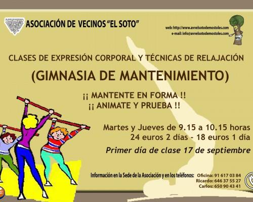 GIMNASIA MANTENIMIENTO 2013